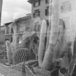 A Firenze, nei pressi della sinagoga