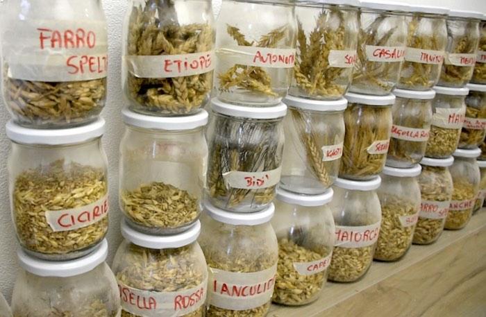 Riso e cereali integrali cottura