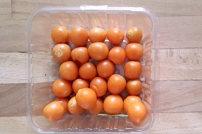 Pomodori selvatici e pomodori coltivati